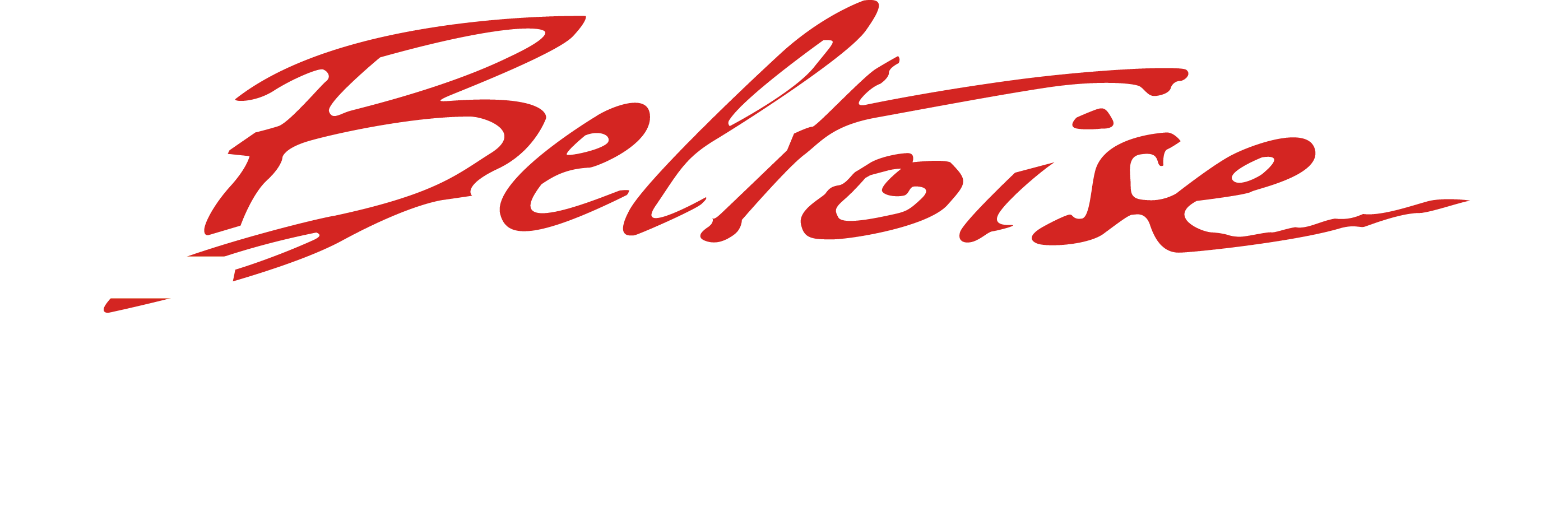 Logo Beltoise Evolution